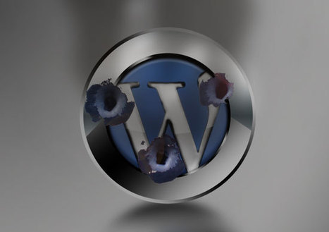 Wordpress Under Attack: How To Avoid The Coming Botnet | The Perfect Storm Team | Scoop.it