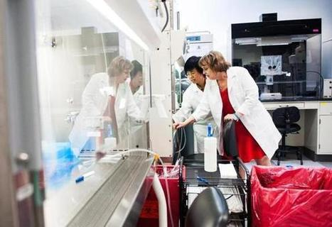 Scientist talks about long road for research into potential Down syndrome ... - Boston Globe | Síndrome Down | Scoop.it