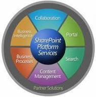 How Can Sharepoint Application Help in Business?   ERP Software   Scoop.it