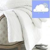 best anti-allergy bedding u | adanmar ker | Scoop.it