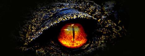Godzilla | Hoang Dinh | Scoop.it