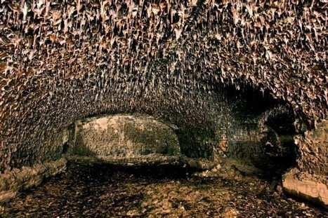 The Eerie Melted Bricks of Fort Zverev, in Russia   Strange days indeed...   Scoop.it