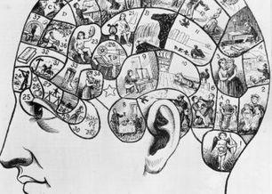 El cerebro de Boltzmann   Artículos de divulgación científica   Scoop.it