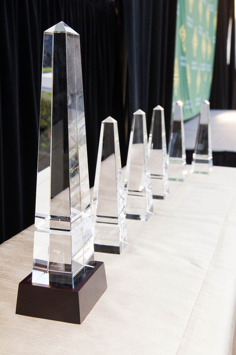 Nominate Outstanding USF Grads for the 2016 Alumni Awards | Change the World from Here | Scoop.it