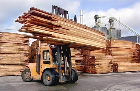 Report warns global warming could trim tree supply for lumber industry | Sustain Our Earth | Scoop.it
