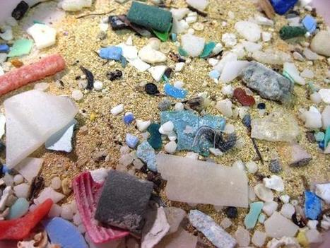 Lake Erie Has Garbage Patch That Rivals Those in Oceans | The great pacific debris island | Scoop.it