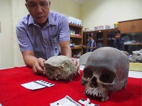 Descubren un cráneo de Homo erectus arcaico en Java (Indonesia) | Arqueología, Historia Antigua y Medieval - Archeology, Ancient and Medieval History byTerrae Antiqvae | Scoop.it