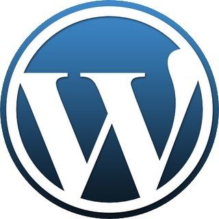 WordPress! - Starten Met WordPress | Social Media & sociaal-cultureel werk | Scoop.it