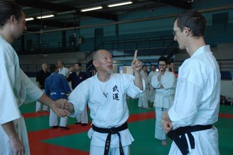Feinte ou pas feinte? | Arts martiaux | Scoop.it