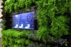 3 Living Walls for Green Building and Innovation in Design - Green-Buildings.com | Vertical Farm - Food Factory | Scoop.it