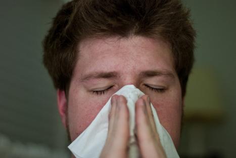 Sniffley tweeters help researchers locate flu outbreaks | EHR Success | Scoop.it