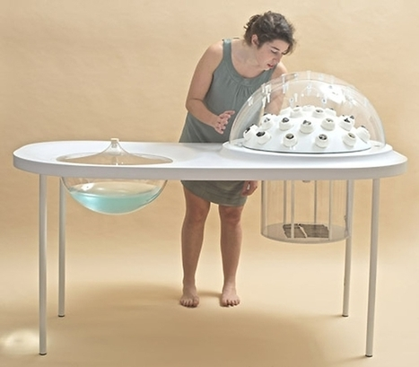 Prototypical incubator transforms plastic waste into edible mushroom cuisine ... - Treehugger | Diary of a serial foodie | Scoop.it
