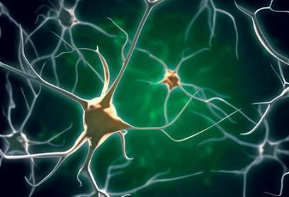 What has neuroscience ever done for us? | The Psychologist | Psycholitics & Psychonomics | Scoop.it