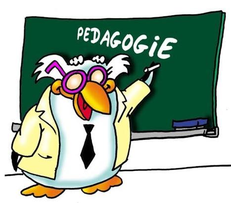 Pédagogie et andragogie : part 2 - Sydologie - toute l'innovation pédagogique ! | Styles d'apprentissage | Scoop.it