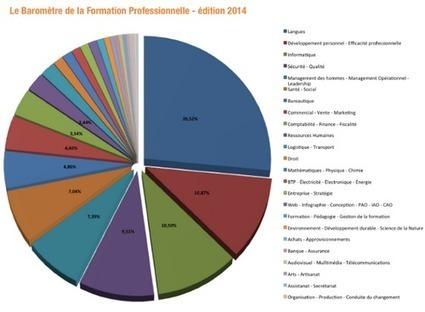 Baromètre de la Formation Professionnelle 2014 : L'anglais toujours en tête des demandes | Formations aéronautiques & diverses | Scoop.it