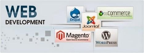 Top Advantages to Outsource Web Development Services | Red Logics | Scoop.it