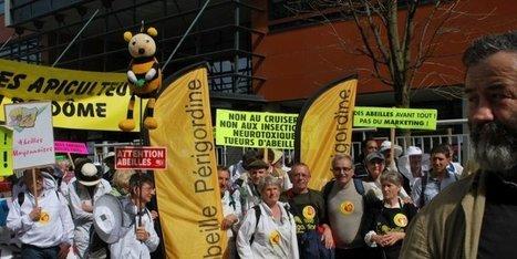Des apiculteurs périgourdins ont manifesté à Paris | Agriculture en Dordogne | Scoop.it