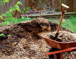 Use a Simple Compost Test to Avoid Contaminated Materials in Your Garden | Permaculture is the future | Scoop.it
