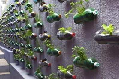 En Brasil impresionante jardín vertical con botellas de plástico recicladas. | Green is pure live | Scoop.it
