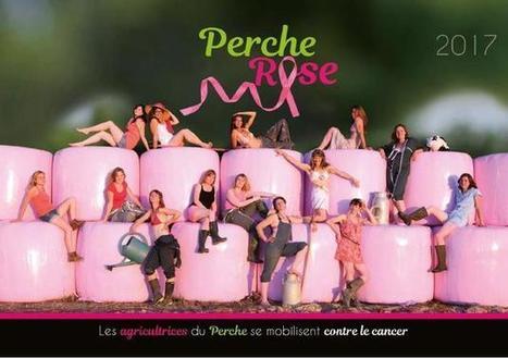 Les Perche Rose se dévoilent dans un calendrier | Le Mag ornais.fr | Scoop.it
