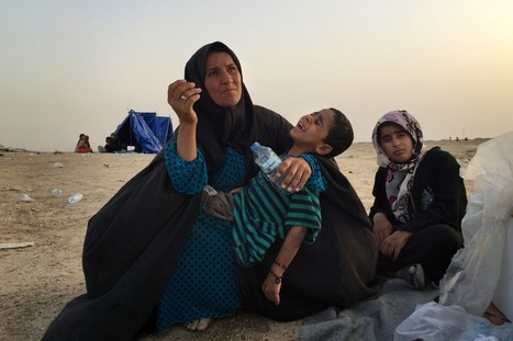 'We are desperate': Iraqis flee Fallujah, only to find another nightmare | Upsetment | Scoop.it