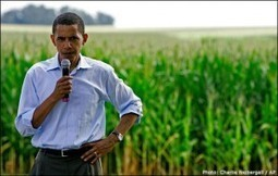 Obama & Congress Will Continue Genetic & Biotech Relationship For Financial Gains | MN News Hound | Scoop.it