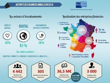 Les business angels ont financé plus de 300 entreprises en 2014 | capital risque et start-up | Scoop.it