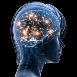 Reprogram Your Brain for a Better Life   Mental Health & Emotional Wellness   Scoop.it