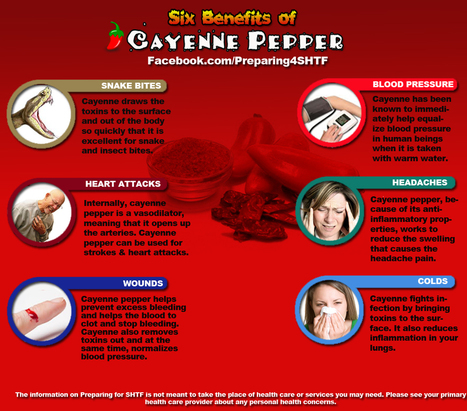 Six Benefits of Cayenne Pepper - Infographic - Preparing For SHTF   Survival Infographics   Scoop.it
