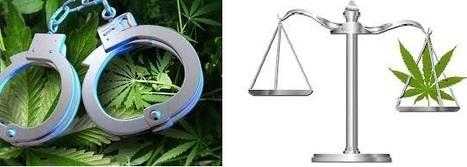 D|R Welch Attorneys at Law | Marijuana Criminal Defense | D|R Welch Attorneys at Law | Scoop.it