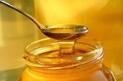 La miel es el único alimento en el mundo que no se descompone   DatoCurioso   Curiosidades   DescubreChía   Scoop.it