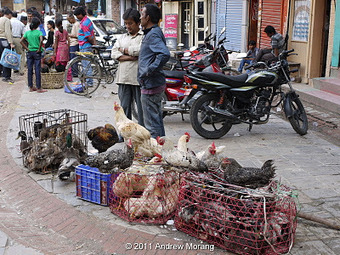Urban Decay: Come to the Supermarket (in Old Kathmandu) | Nepali Architecture & Urban Planning | Scoop.it