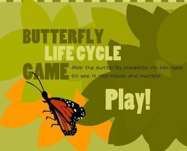 Life Cycles | Second Grade Unit Resources on Life Cycles | Scoop.it
