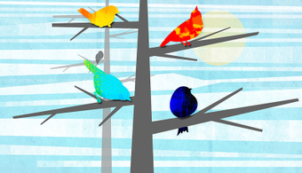 How human language could have evolved from birdsong | ICT hints and tips for the EFL classroom | Scoop.it