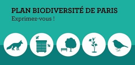 [CONSULTATION] Déjà beaucoup d'idées pour le nouveau Plan Biodiversité de Paris! Partagez les vôtres ! | Associations - ESS - Participation citoyenne | Scoop.it