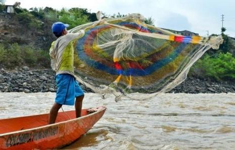En Colombie, la sécheresse tue les poissons et vide les fleuves   Biodiversité   Scoop.it