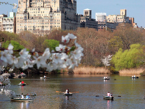 New york central park south apartments for sale | 22 Central Park South | Scoop.it