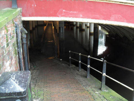 Manchester/Rochdale Canal Undercroft | Canal Vines | Scoop.it