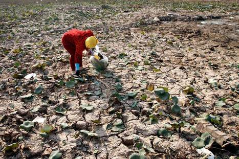 Crippling #Drought Disrupts Life in #Mekong Region #Asia #climate | Messenger for mother Earth | Scoop.it