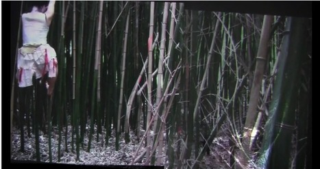 Biyuu by Liz Phillips | DESARTSONNANTS - CRÉATION SONORE ET ENVIRONNEMENT - ENVIRONMENTAL SOUND ART - PAYSAGES ET ECOLOGIE SONORE | Scoop.it