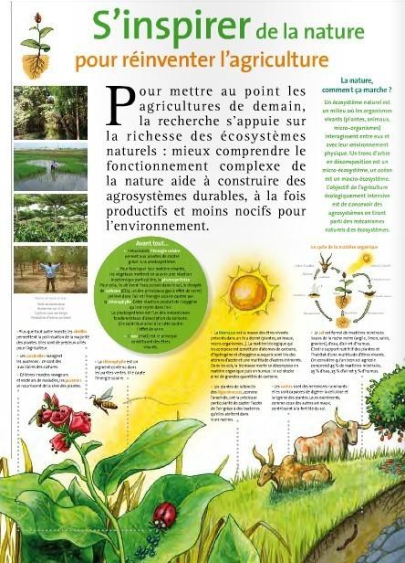 La nature comme modèle | Presse le Monde | Scoop.it