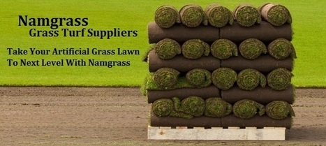 Get the Perfect Grass Turf Suppliers from Best Turf Namgrass | Artificial Grass India | Scoop.it
