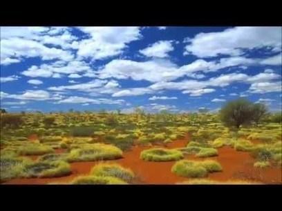 Temperate Grassland | Temperate Grassland | Scoop.it