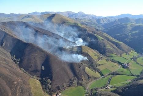 Pays basque : 160 hectares détruits par des écobuages non maîtrisés | Agriculture en Pyrénées-Atlantiques | Scoop.it