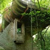 Construire durable - Green houses
