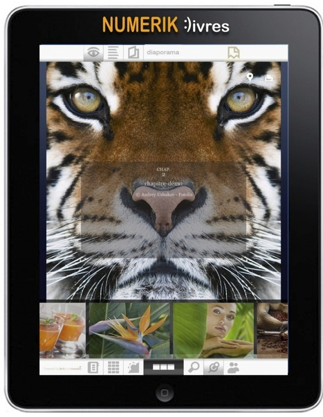 Numeriklivres se lance dans le livre-application sur iPad | ACTU DES EBOOKS | Scoop.it