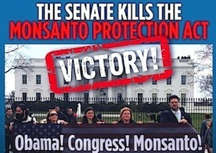 Monsanto Protection Act Dies in Senate | EcoWatch | Scoop.it