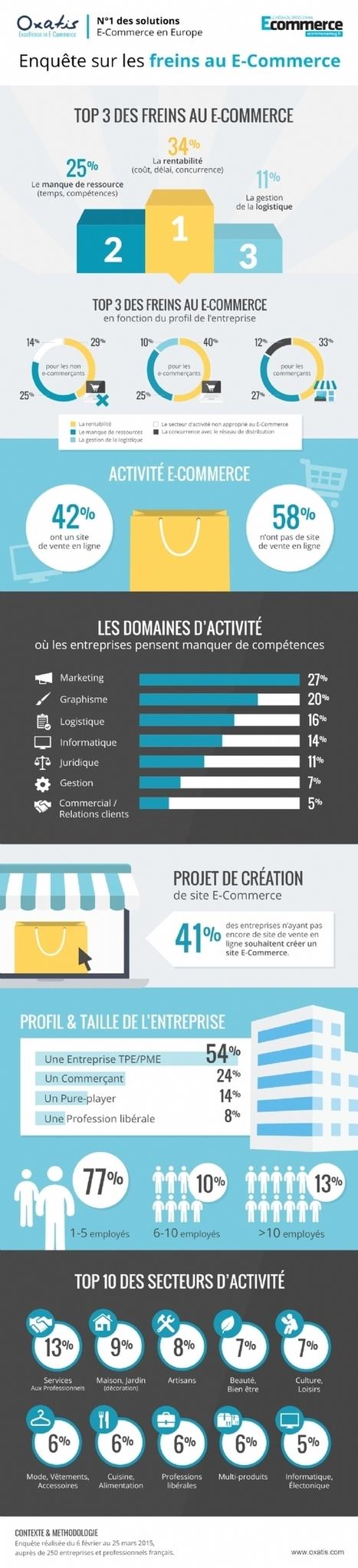 Infographie | La rentabilité, principal frein au lancement d'une activité e-commerce | E-Commerce | Scoop.it