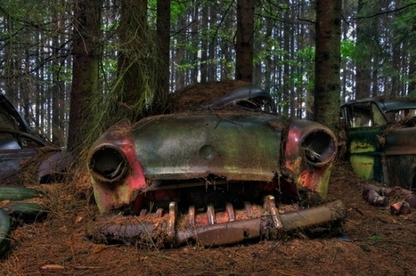 Photography of Car Cemetery in Belgium | inspiration photos | scatol8® | Scoop.it