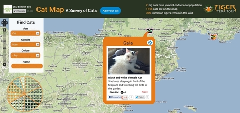 ZLS Cat Map Survey - Inventario de gatos del mundo | TIG | Scoop.it